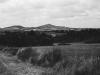 Siegengebirgsblick vom Komiansweg - ca. 1931 (Quelle NN)